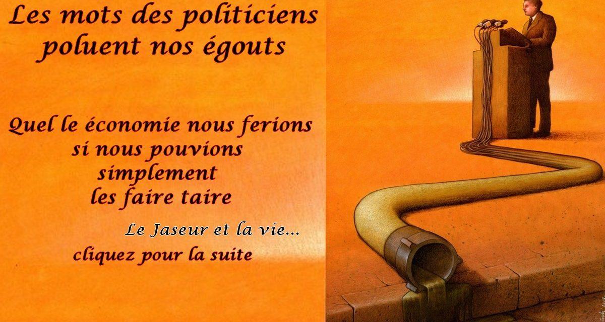 Politique, hypocrisie… la démocratie un parapluie pour se protégé de l'ombre